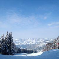 長野-野沢温泉 *スキー*
