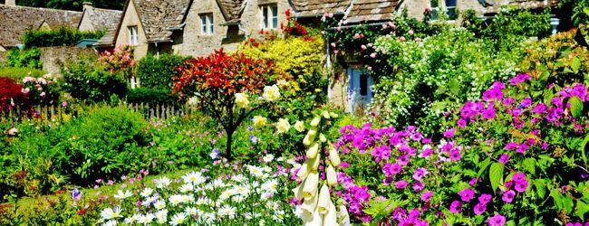 花と緑が輝く季節☆ときめきと癒しの旅ロン...