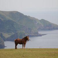 201405-03_GWは隠岐4島を旅する(西ノ島)Nishinoshima island / Shimane