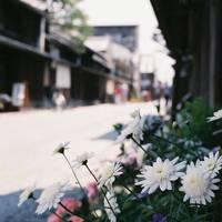 近江商家の町 長浜・近江八幡  ぶらぶら歩き暇つぶしの旅