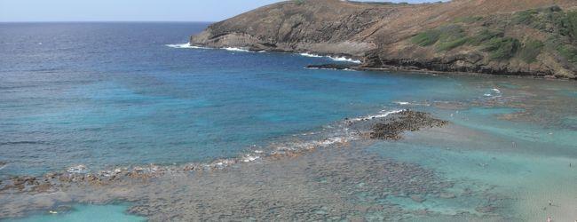 2014年5・6月ついにハワイへ (2) ☆オワフ島(2)