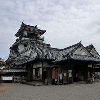 高知県を中心に、岡山県・徳島県にも行ってきました。特に高知県はかなり堪能してきましたよ!他の二県は穴場スポットに!