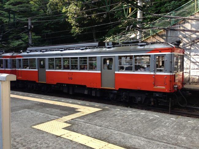 都内を出て箱根で女子会の3回目<br /><br />今回は季節がいいので登山鉄道に乗って紫陽花を見に行きました。