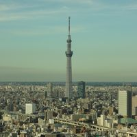 東京、美味しいもの巡り。そして神社も巡りたい