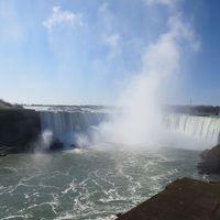 2013年4月 カナダ旅行記�