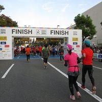 大阪マラソン2014 暑かった42.195キロ(大会当日編)