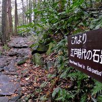 箱根旧街道を歩き、飛竜の滝・芦之湯へ