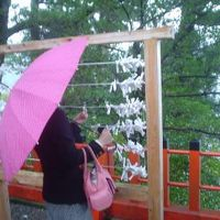 ☆紅葉の季節☆観光客少なめな 近場の 『世界遺産』 へ行ってみよう~っと~♪