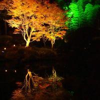 **松島紅葉ライトアップ 2014**