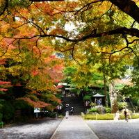 九州の旅 大興善寺(11月17日)