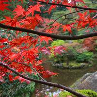 見頃を迎えた金沢・加賀の紅葉をめぐる旅(その2、鶴仙渓と那谷寺は紅葉真っ盛り!)