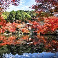 カメラをポケットに紅葉の醍醐寺まで連休に出かけて見ました