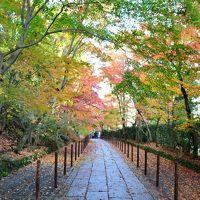 光明寺 京都の紅葉� 光明寺(長岡京)と嵐山