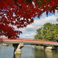 晩秋の天橋立をの〜んびり散策