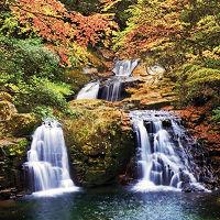 日本の滝100選・紅葉の赤目四十八滝を散策