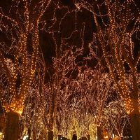 速報!!☆★☆★SENDAI光のページェント2014★☆★☆