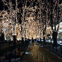 2014年12月 青春18きっぷ2014?2015冬第一弾 その2 宮城