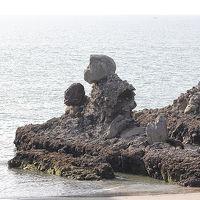 壇蜜に誘われハアハア鹿児島へ③(川内から枕崎編)