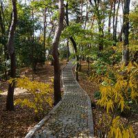 五條からミナミ・枚方の大阪界隈手探り旅(三日目・完)〜京都から大阪を結ぶ京都街道。伏見の陰に隠れていますが、こっちもなかなか。枚方宿周辺を探索します〜