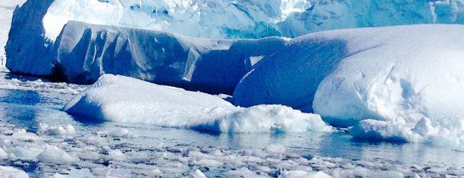 2014 年末年始 南極ちょいブラ!4...
