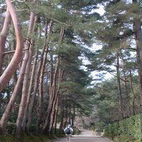 JR京都から嵯峨野線で20分 城下町の面影を残す・亀岡市を訪ねて