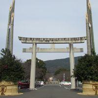 九州 亡き父の見た景色を追って・・ � 雲仙 千々石カステラ 世界一の門松
