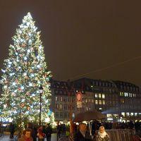 出発2日前にいきなり決まったパリ旅行 2日目TGVでパリからストラスブールのクリスマスマーケットへ