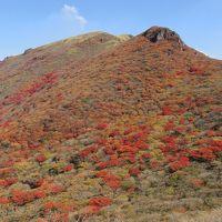 紅葉に染まる久住登山!