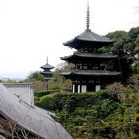 大阪出張 當麻寺を訪ねる2-葛城市相撲館けはや座,當麻蹶速塚,當麻寺,西南院,奥院