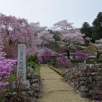 奥多摩あきる野 花の寺 龍珠院