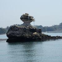 松島・塩釜の景色・桜・味覚を楽しむ