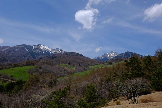 春の清里高原、絶景ハイキングコースをご紹介します。<br /><br />徒歩1時間10分。どなたにでもお楽しみいただけます♪<br /><br />