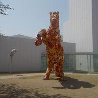 十和田市現代美術館。