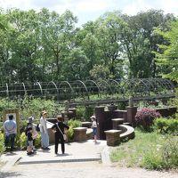 テルマエ・ロマエのロケ地「七ツ洞公園」等を巡る