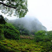 【GWの旅。呼子と平戸へGO〜】その1:雨の御船山楽園と、イイ居酒屋みつけたぜの嬉野温泉へ。