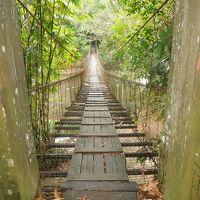 ボルネオ島(マレーシア)サバ州の自然に触れる旅 �コタ・キナバル街歩き 4月26日(日)
