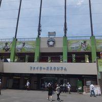 鎌ヶ谷球場(ファイターズスタジアム)での観戦