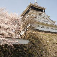 福岡-富山 1000キロ ローカル線の旅