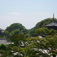 奈良の一人旅 當麻寺