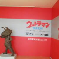 東京からワンデートリップ�横須賀美術館、シーバス、横浜中華街