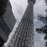 久しぶりのソウル旅行のはずが・・・東京観光2日目
