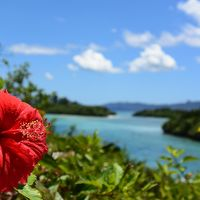 この夏休みも行くぜ!我が家恒例 沖縄旅 2015年は本島&石垣島(^^)v (4/5)