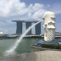 スクートで行くシンガポール弾丸2泊4日一人旅5