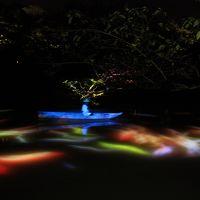 熱帯夜の御船山楽園で納涼ライトアップ&デジタルアート