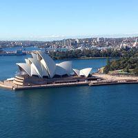 オーストラリア3都市周遊�シドニー街歩き〜野生のオウムとたわむれる〜
