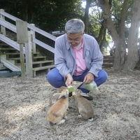 旅立ちはウサギの島から  中国地方の旅 広島編