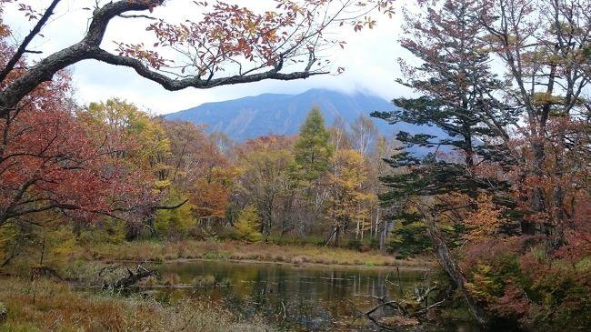 思い立って、戦場ヶ原を歩いてみる気になった。<br />当初の予定は、赤沼から小田代ヶ原・泉門池・湯滝・戦場ヶ原・赤沼戻り。<br /><br />しかし、歩くのが遅い為、時間の関係から、湯滝を省いての散策に途中変更あり。<br />ハイキング後、奥日光・かつら荘にて、日帰り入浴。<br />中禅寺湖で、景色を眺め。<br />いろは坂途中にある滝見学後、夕飯。<br /><br />紅葉は、いま少しといった感じで、中禅寺湖湖畔辺りはまだまだ・・という印象。<br />やはり、日光は、10月下旬が、1番良さそうですね!!(^.^)<br /><br />※旅行記の地図は、多分この辺りという所チェックしてます。<br />利用時は、ご自身で再確認願います。<br />※ハイキングの感想<br />道が出来ており、あまり高低差も無く、道標もチョコチョコあるので初心者でも安心でした。<br />また、ハイキング行程では、下りはあるものの、登りは一箇所位の印象で、いつ登ってたのか?気がつかない程度です。<br /><br /><br />鶴ヶ島ic〜沼田ic   2030円<br />お風呂 一人          700円<br />食事 二人で      約1800円<br />伊勢崎ic〜東松山ic 1230円<br />ガソリン代         2621円<br /><br />