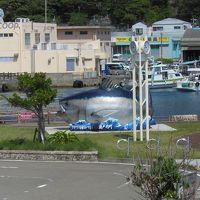 瀬戸内町海の駅「せとうち」でお昼にしました