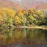 紅葉真っ最中の福井再発見 刈込池