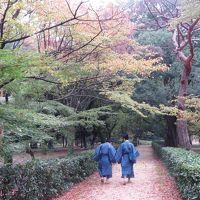 121回目の時代祭り、大阪~京都チャリで往復110km応えた~